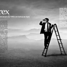 Nasza aktywność na rynku FOREX: przegląd prasy i mediów